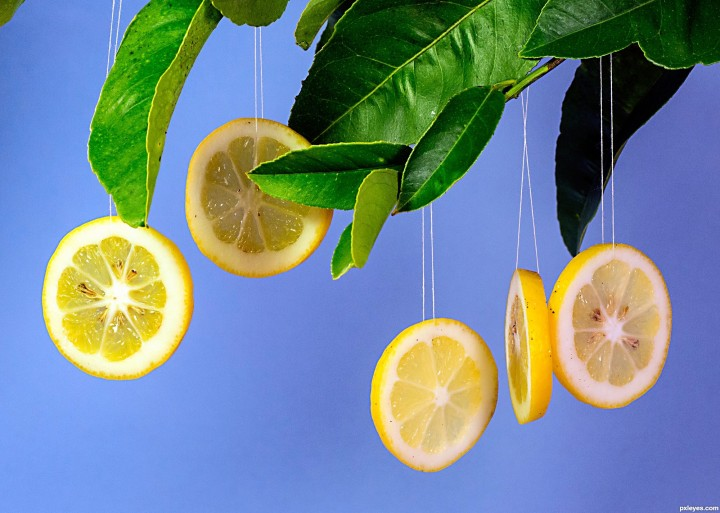 Life's Lemons | Cultivating a Spirit of Diligence